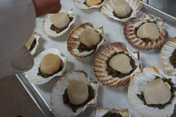 Great scallops.